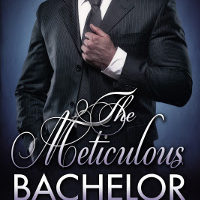 NEW RELEASE: The Meticulous Bachelor